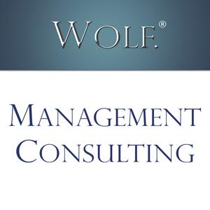 WOLF Management Consultancy